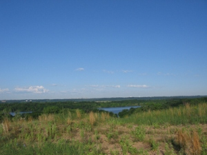 A view of the Mississippi River at Grey Cloud SNA